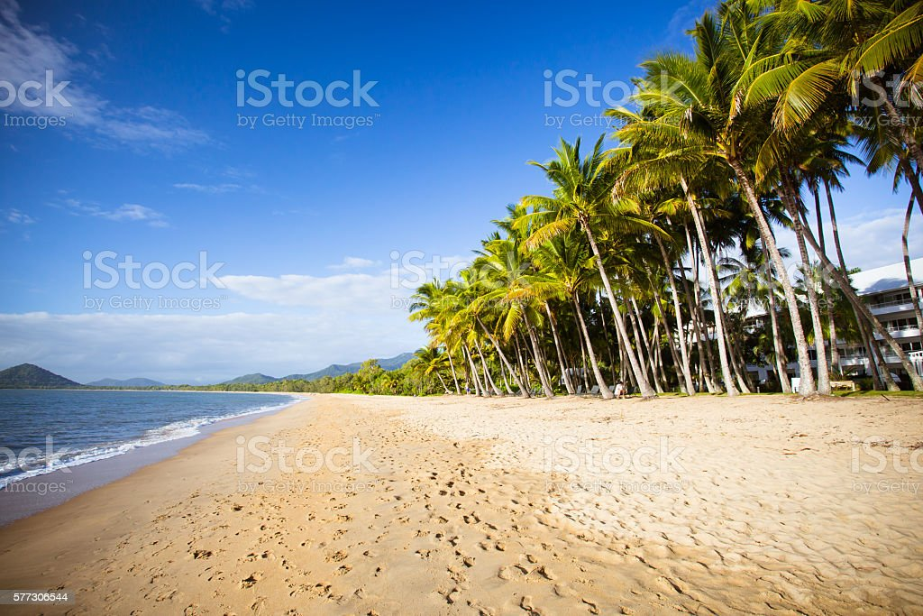 Palm Cove Beachfront stock photo