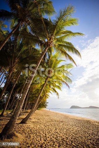 istock Palm Cove Beachfront 577306692