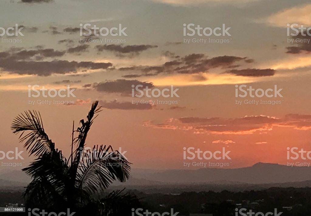 Palm fringed sunset royalty-free stock photo