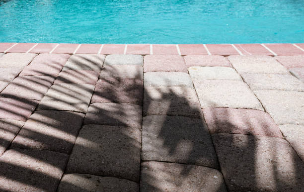 palm frond shadow on patio paver bricks by a swimming pool stock photo