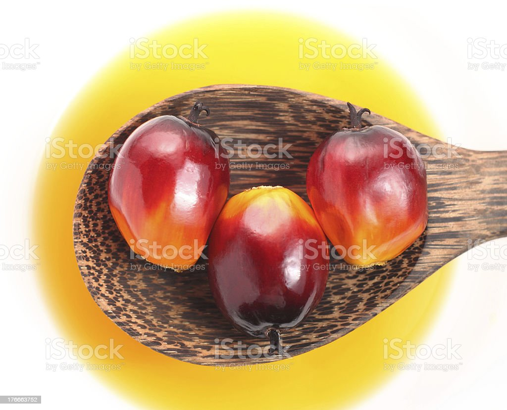 Palm fruit and cooking oil royalty-free stock photo