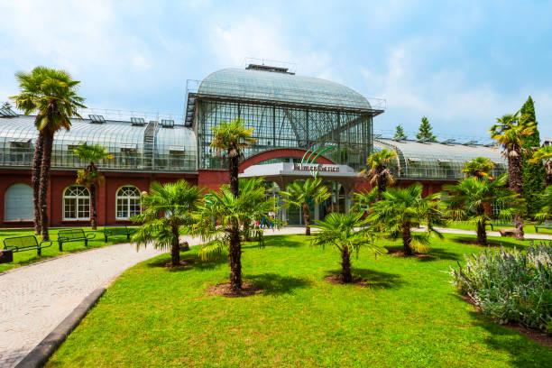 Palm garden botanical garden in Frankfurt stock photo