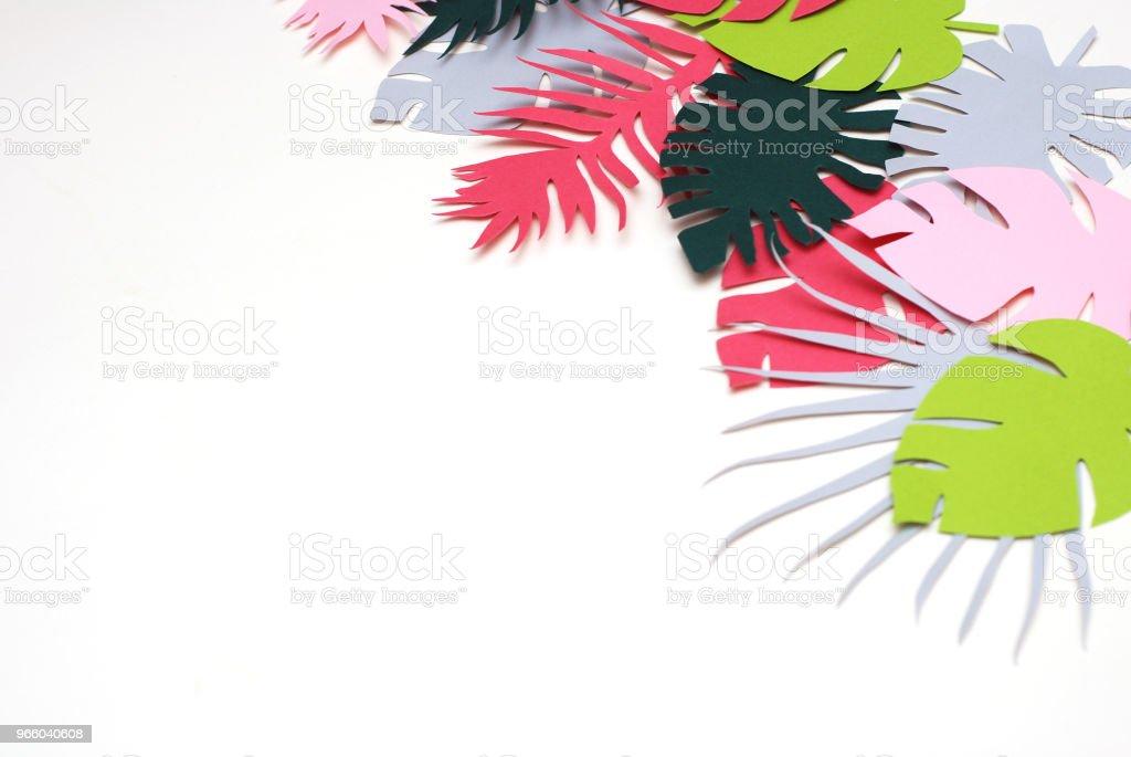 Palm groene bladeren tropische exotische boom Isoalted op witte achtergrond. Vierkant plaatje. Holliday patroon sjabloon blad - Royalty-free Abstract Stockfoto