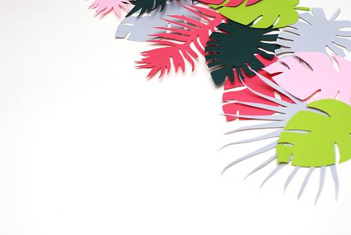 Palm Groene Bladeren Tropische Exotische Boom Isoalted Op Witte Achtergrond Vierkant Plaatje Holliday Patroon Sjabloon Blad Stockfoto en meer beelden van Abstract