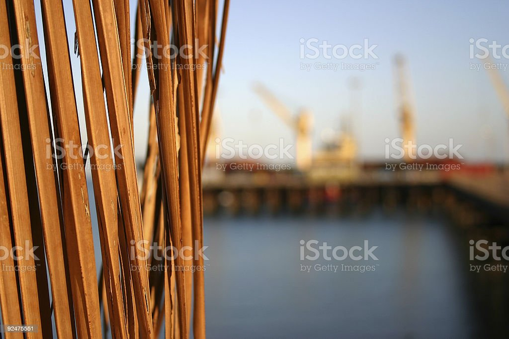 palm harbor royalty-free stock photo