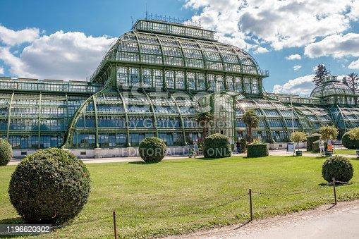istock Palm House (Palmenhaus) in Vienna 1196620302