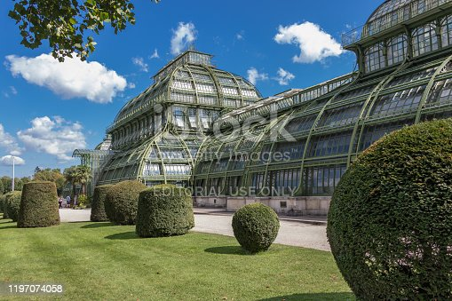 istock Palm House (Palmenhaus) in Vienna 1197074058