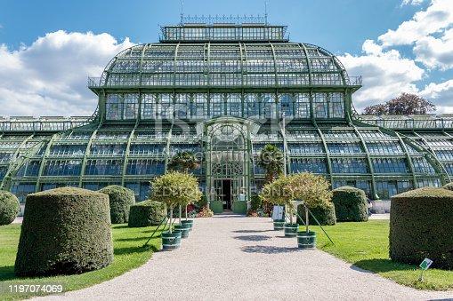 istock Palm House (Palmenhaus) in Vienna 1197074069