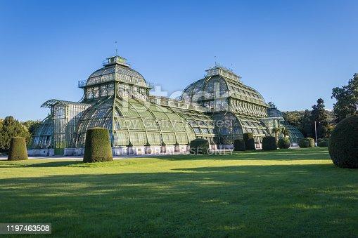 istock Palm House (Palmenhaus) in Vienna 1197463508
