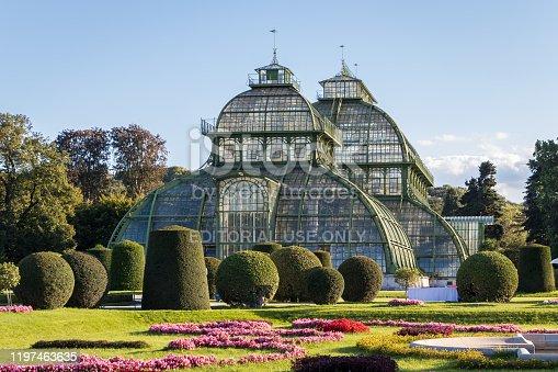 istock Palm House (Palmenhaus) in Vienna 1197463635