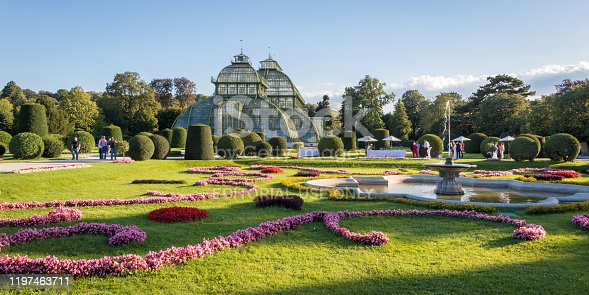 istock Palm House (Palmenhaus) in Vienna 1197463711