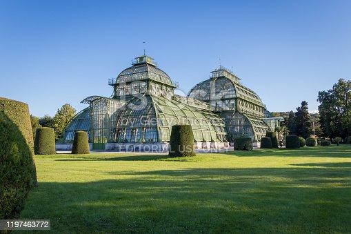 istock Palm House (Palmenhaus) in Vienna 1197463772