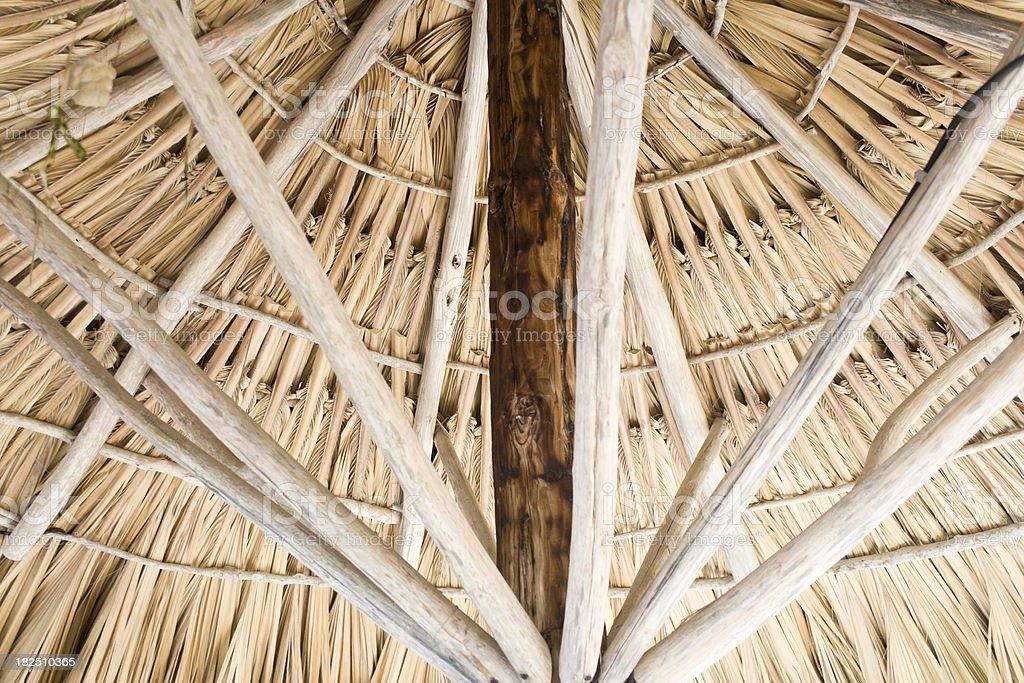 Palm Hut royalty-free stock photo