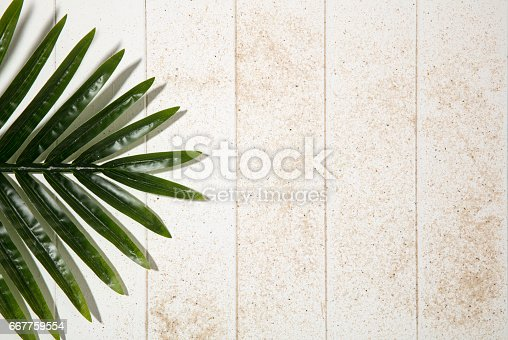 Palm Leaf with sand on white wooden background