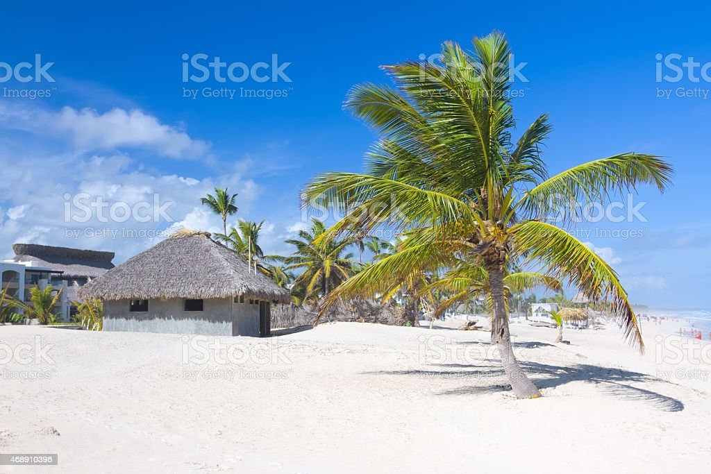 Palm leaf roof bungalow on the tropical beach, Dominican Republic stock photo