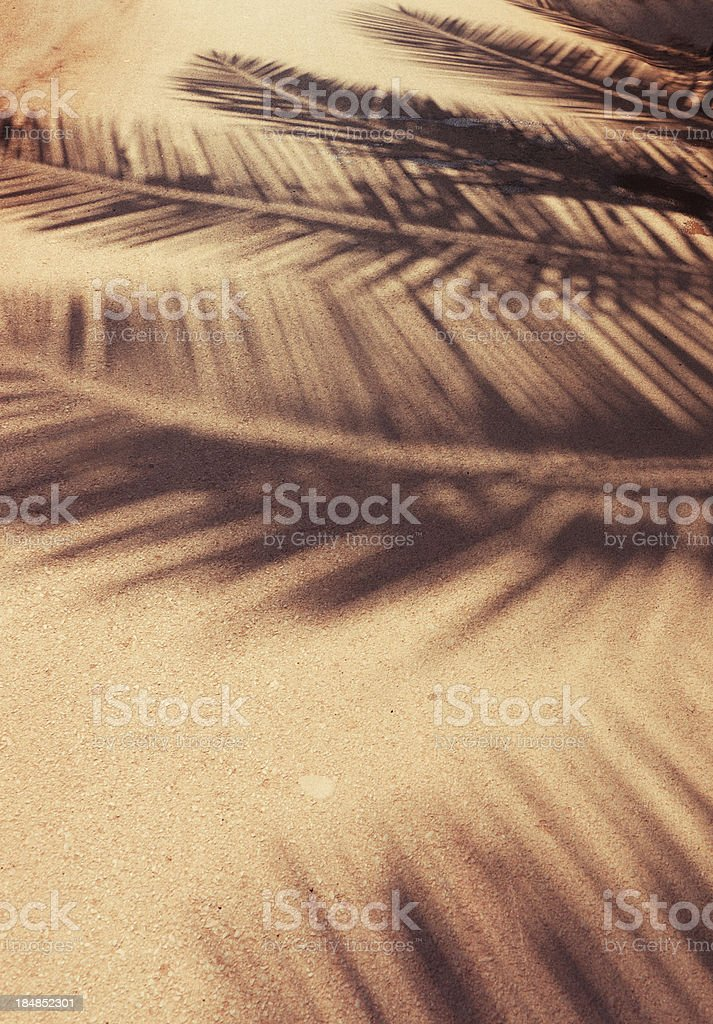 Palm leaf shadows at ground royalty-free stock photo