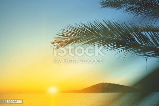 Palm leaves against sunset on the sea. Summer vacation landscape.
