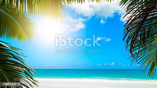 Palm leaves on blue sky background. weekend Holidays tropical beach concept background
