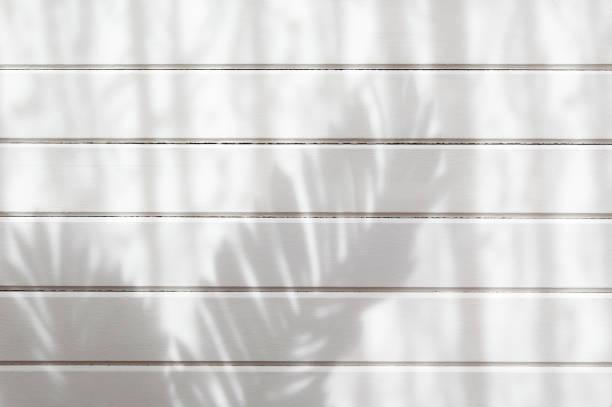 palm blad skugga och trä planka vägg konsistens bakgrund - solar panel bildbanksfoton och bilder