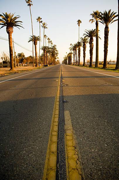 von palmen gesäumte highway - mark tantrum stock-fotos und bilder