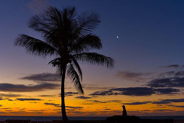 Palm moon Aufstieg – Foto