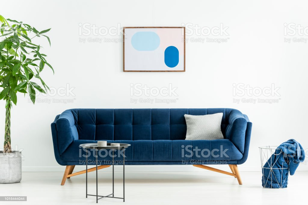 Palm Next To Blue Sofa With Pillow In White Living Room Interior With  Poster And Black