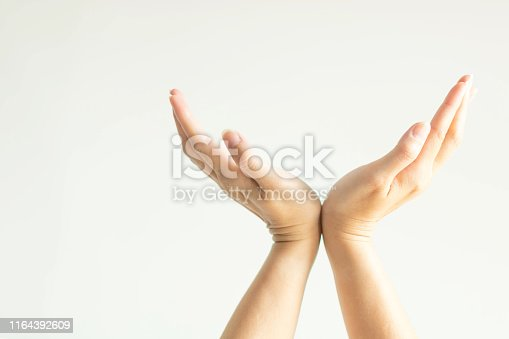 883034410 istock photo Palm of hands opening in right and left direction; close together at wrists; gesturing like prop up something. 1164392609