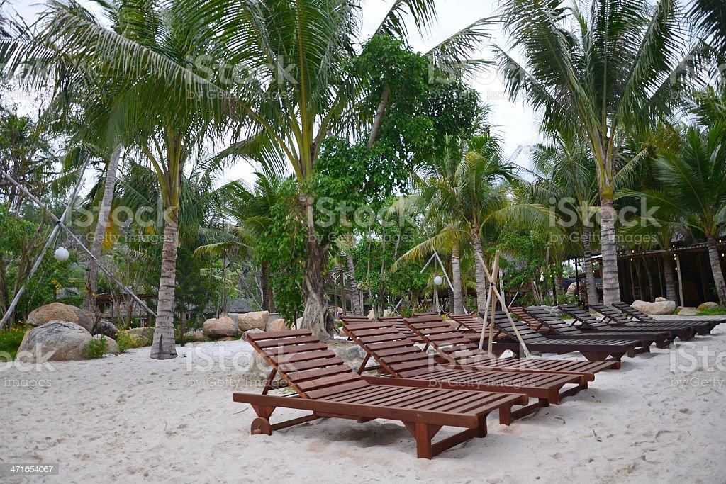 Palm resort royalty-free stock photo