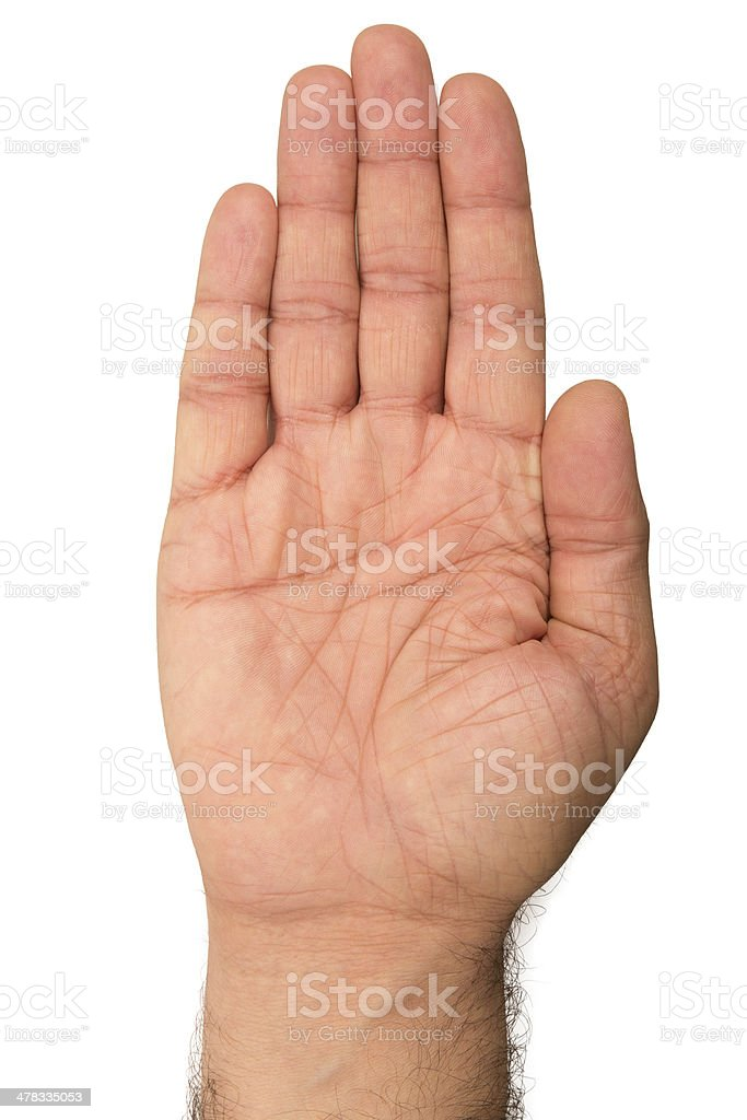 Palm side of hand on white background stock photo