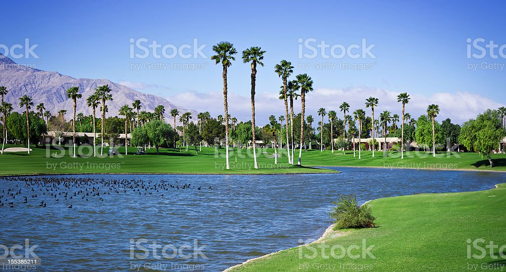 Palm Springs Golf Course Panoramic XXXL stock photo