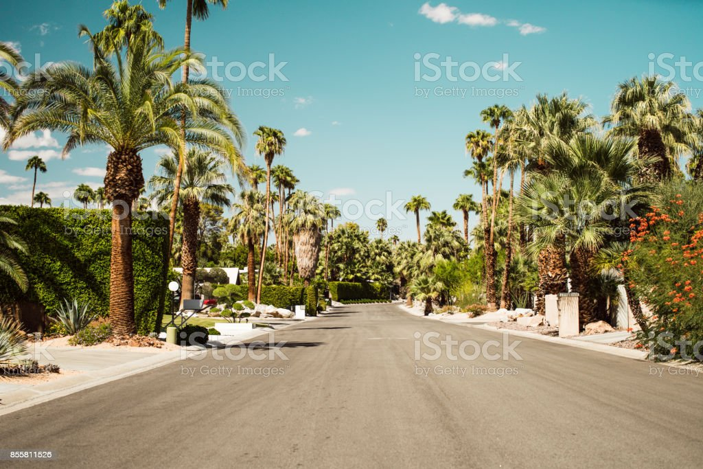 Palm Springs Summers stock photo