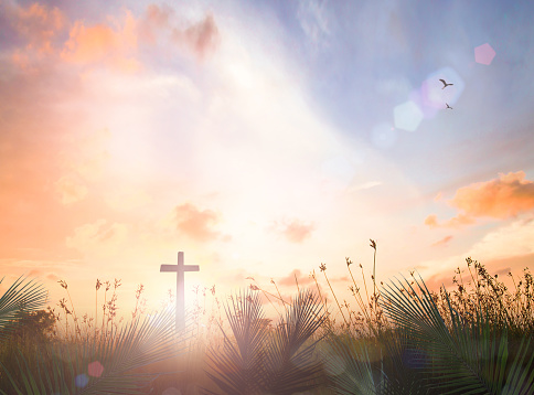 Silhouette cross with ยalm leaf meadow sunrise background