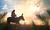 esus christ riding a donkey on meadow sunset background