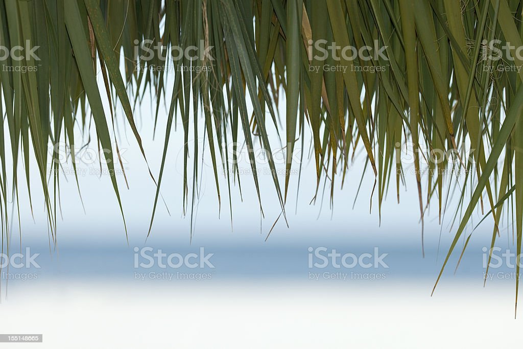 Palm Thatched Tiki Hut Roof with Blurred Beach and Ocean stock photo