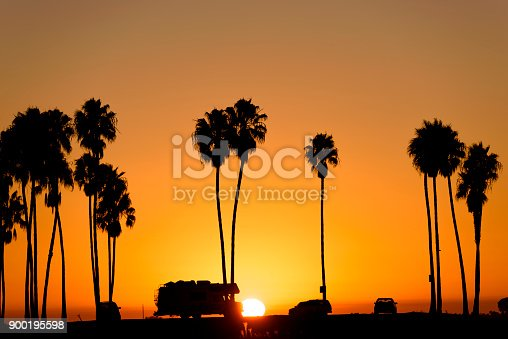 Palm tree and sunset sky
