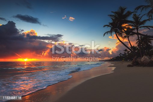 Palm and tropical beach at sunrise