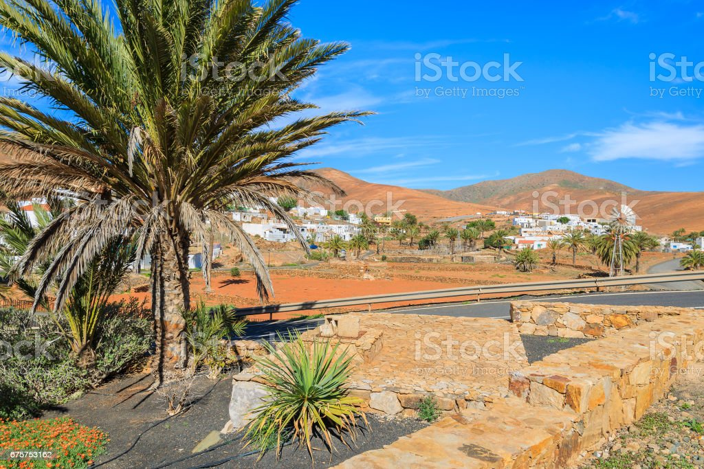 Fuerteventura is the second biggest of the Canary Islands, after...