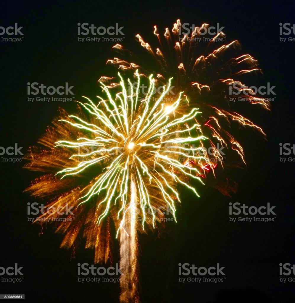 Palm Tree Fireworks stock photo