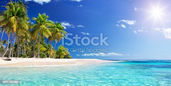 Guadalupe - Antilles Islands Seascape Wit Wild Island