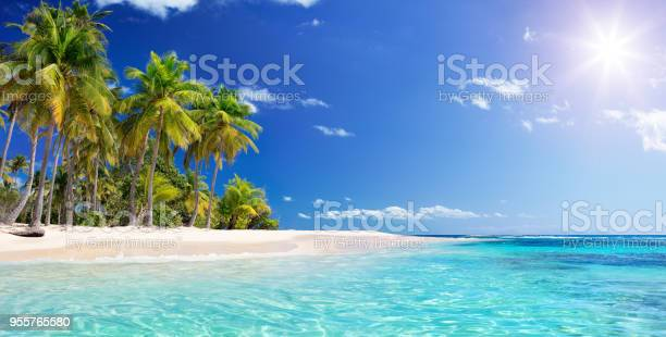 Guadalupe - Antilles Islands Seascape Wit Wild Island
