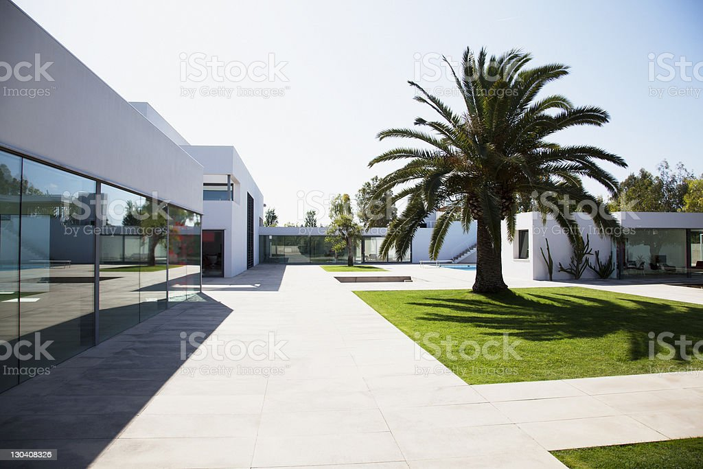 Palm tree in courtyard of modern house stock photo