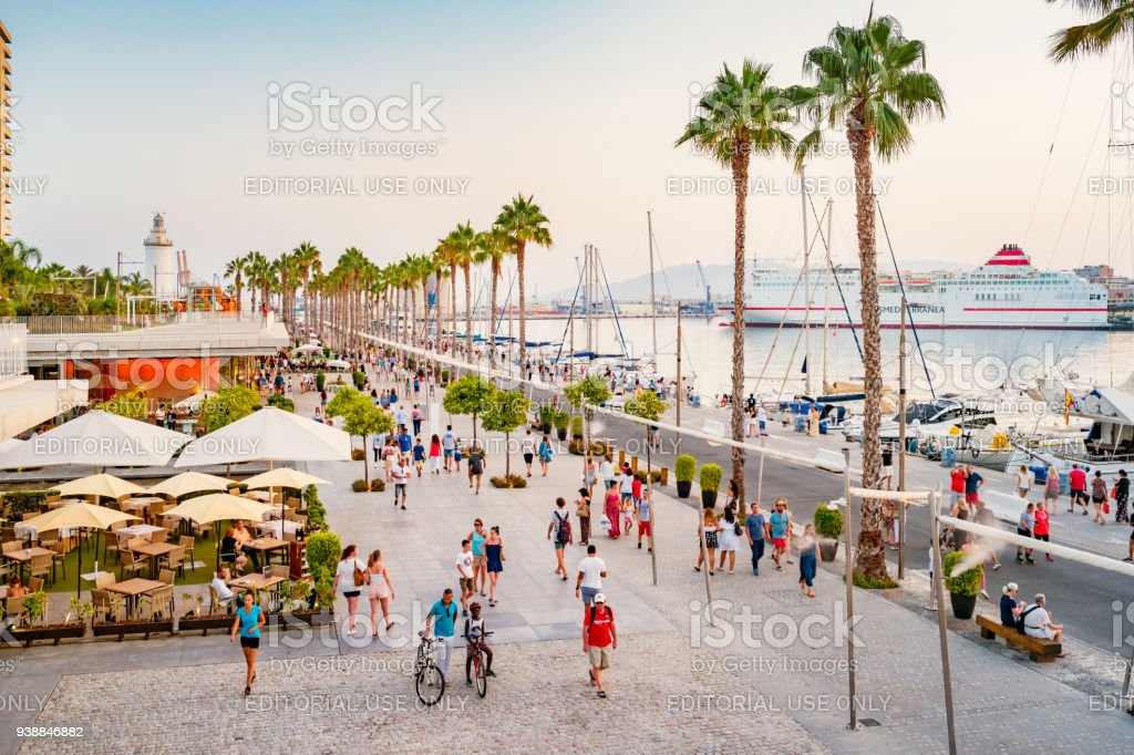 Palm tree lined promenade in downtown Malaga Spain stock photo