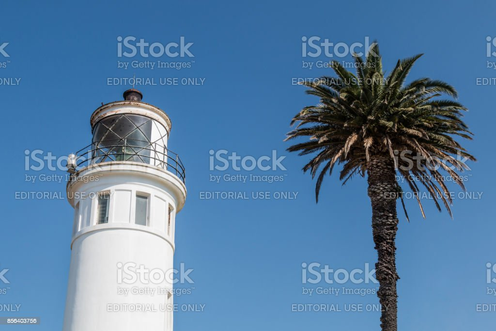 Palm Tree Next to Upper Portion of Point Vicente Lighthouse in CA stock photo