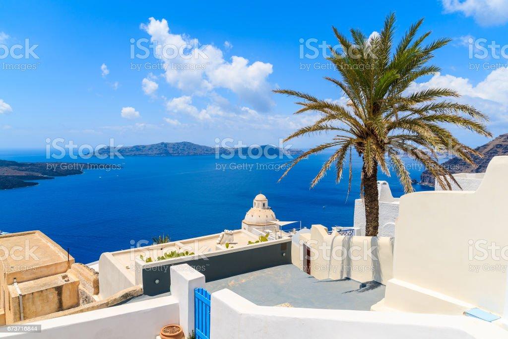 Palmier sur la terrasse avec vue sur la mer dans le village de Firostefani, île de Santorini, Grèce photo libre de droits