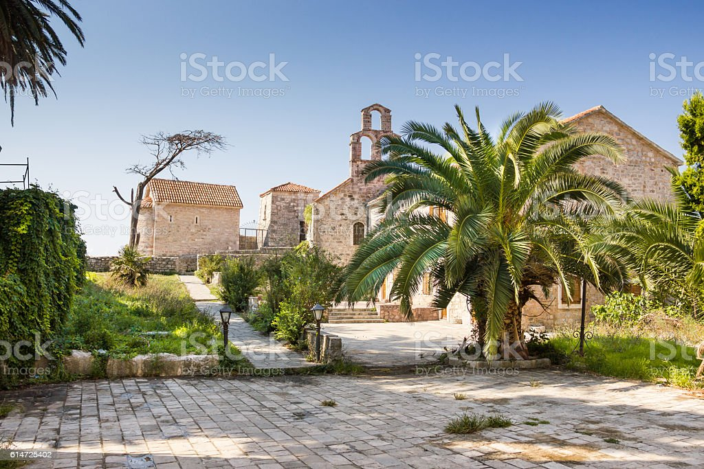 Palm tree on the streets of Old Town of Budva, stock photo