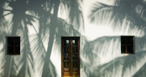 Palm tree shadows on a white house