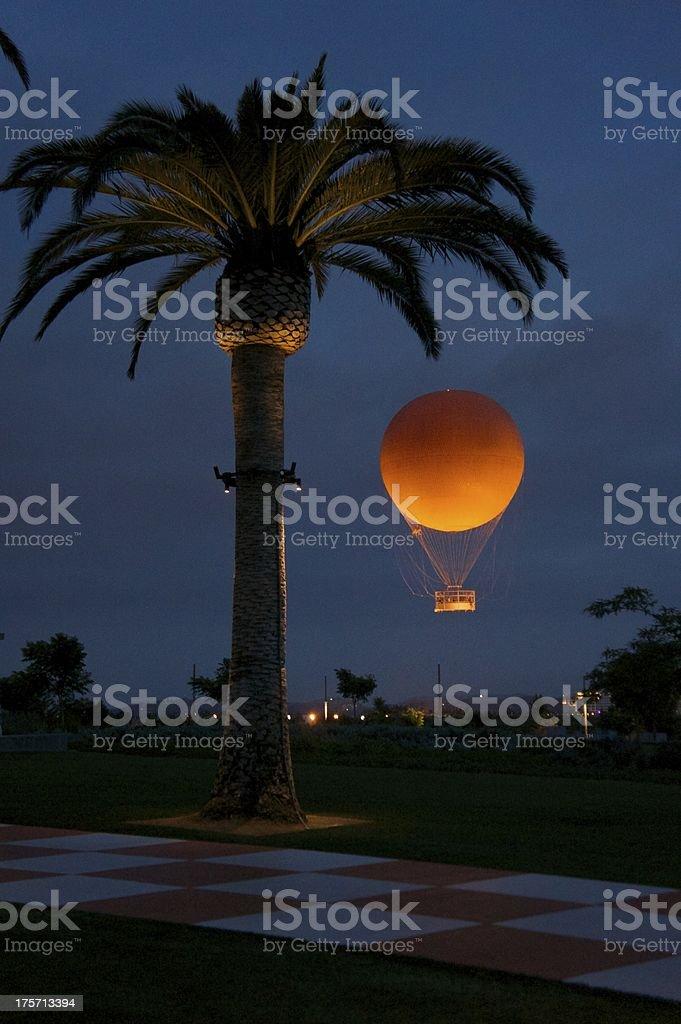 Palm Tree With Balloon stock photo