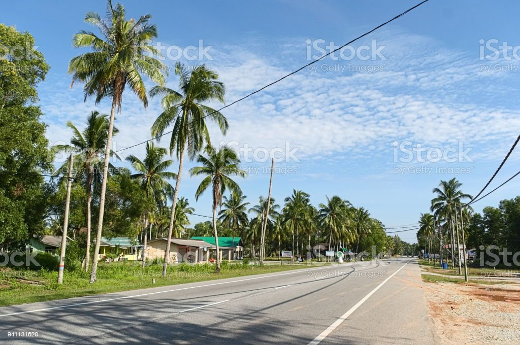 Palm trees along empty highway stock photo