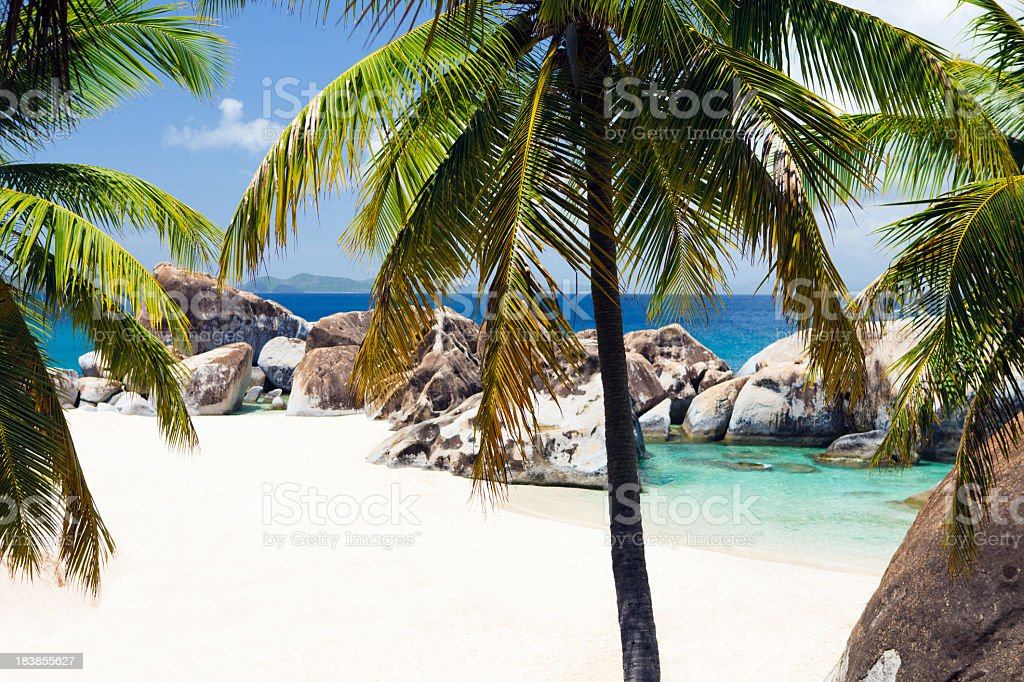 palm trees and boulders at a beach in Virgin Gorda stock photo