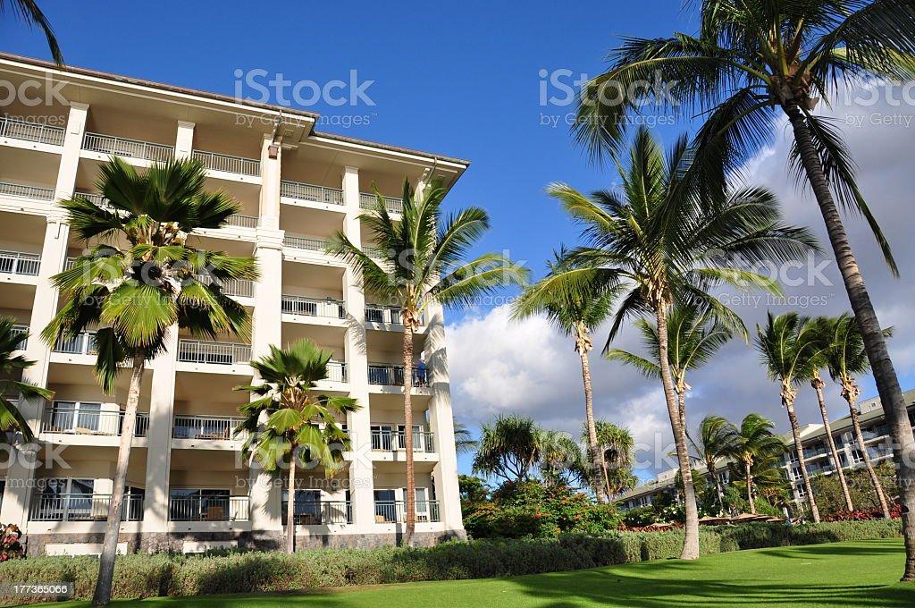 Palm trees and condos, Maui royalty-free stock photo